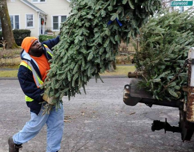 man putting a christmas tree in the back of a garbage truck